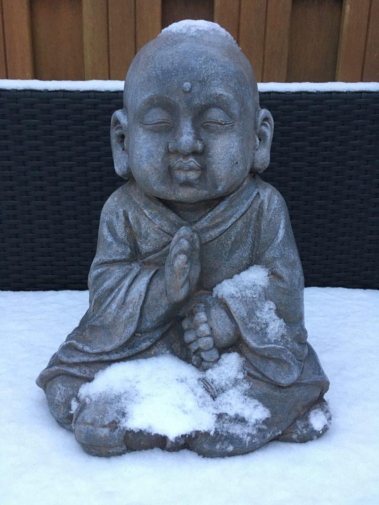 Boedha-Sneeuw